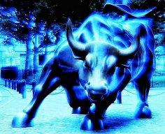 Cold_bull