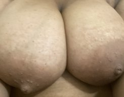 Loveari1